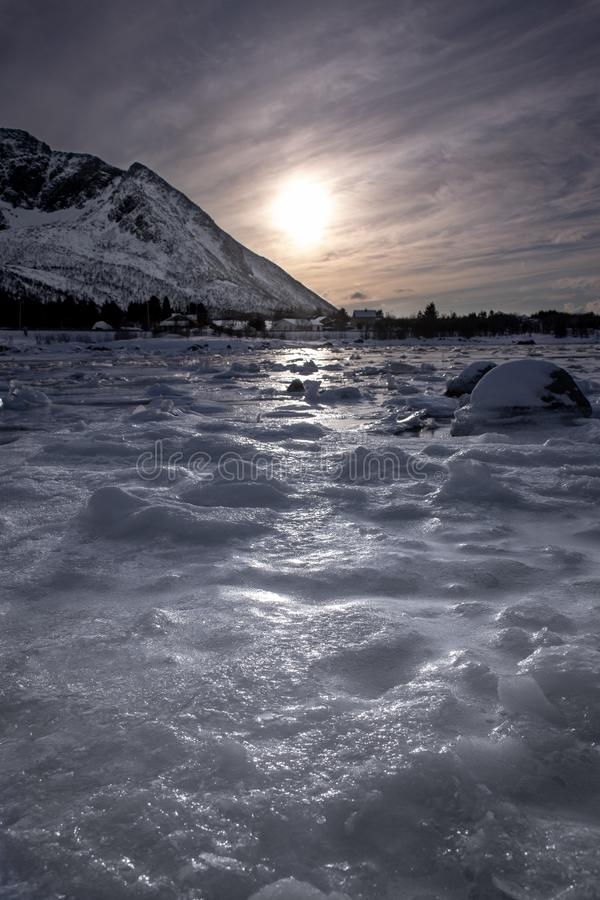Frozen fjord in sunset on the Lofoten Islands royalty free stock images