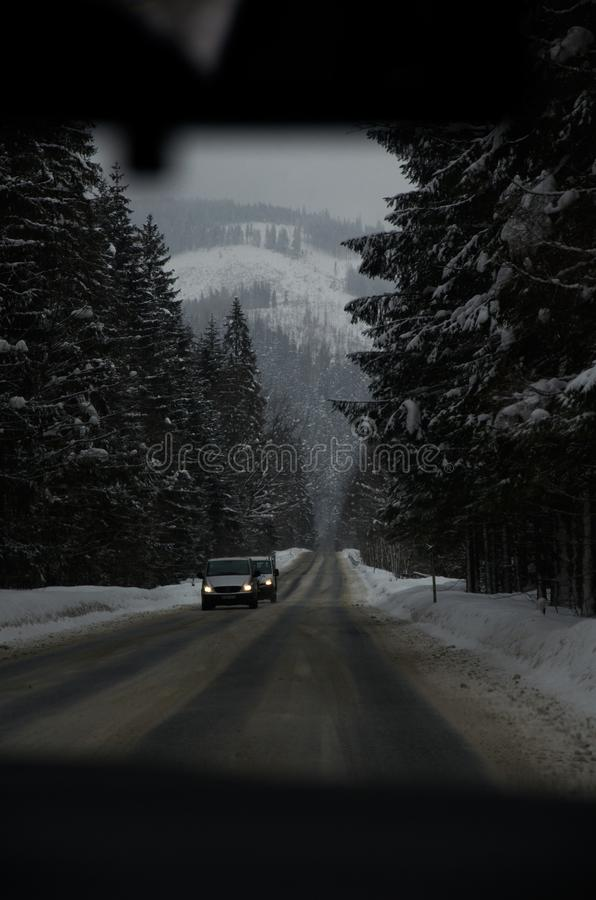 Frozen forest and mountains in snow royalty free stock photos