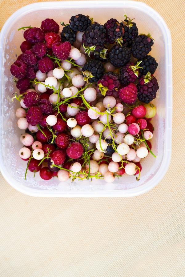 Frozen fruit berries on bowl and clear background royalty free stock photos