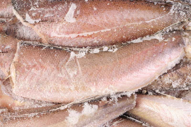 Frozen hake fish as food background royalty free stock images