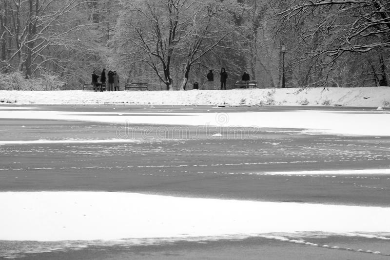 Download Frozen lake stock image. Image of black, cold, gray, people - 4007305
