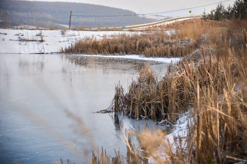 Frozen Lake stock images