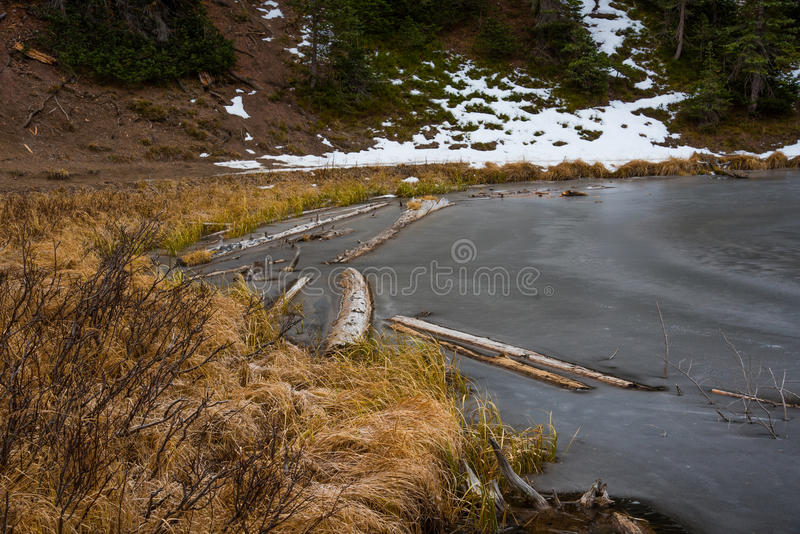 Frozen Lake. Lake Irene frozen over in Rocky Mountain National Park royalty free stock photos