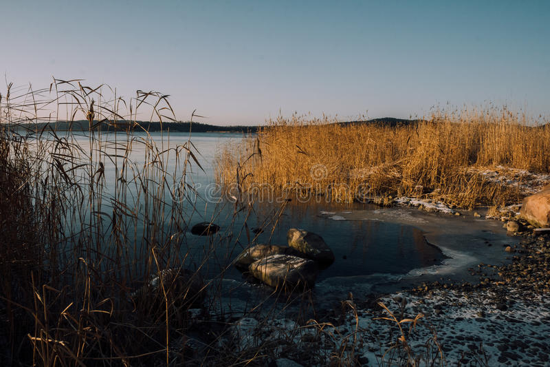 Frozen lake shore royalty free stock photography