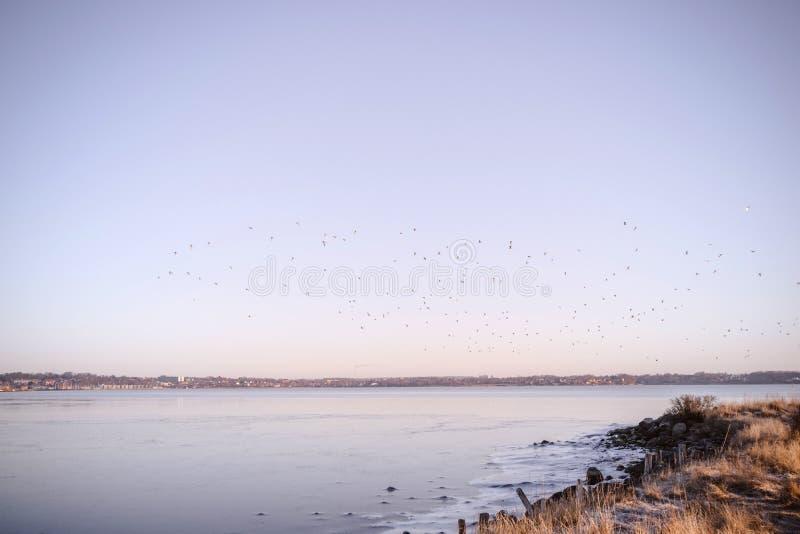 Frozen lake in the sunrise stock photos