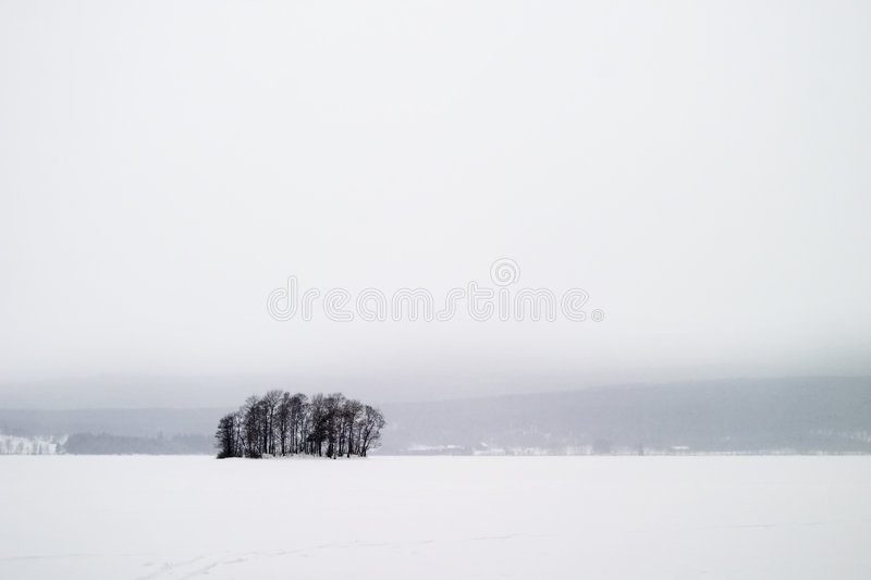 Frozen Lake with Trees royalty free stock photography