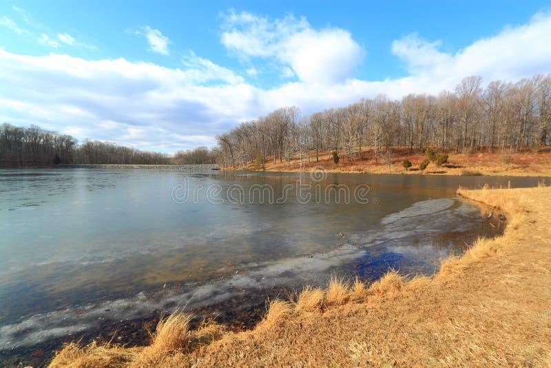 Download Winter Lake stock image. Image of season, natural, tree - 36675339