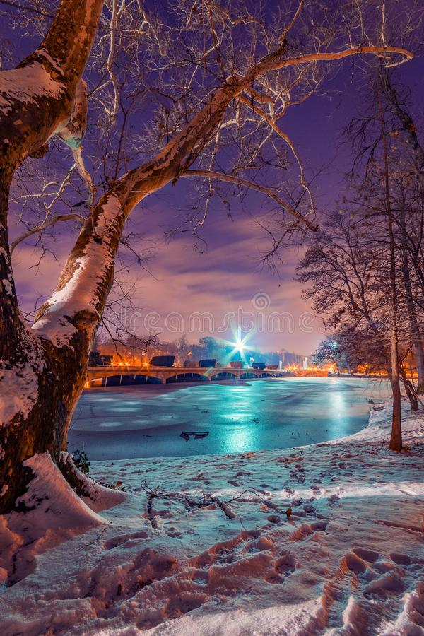 Frozen lake in the winter shot during night in a park with a tree covered in snow in the foreground stock photography