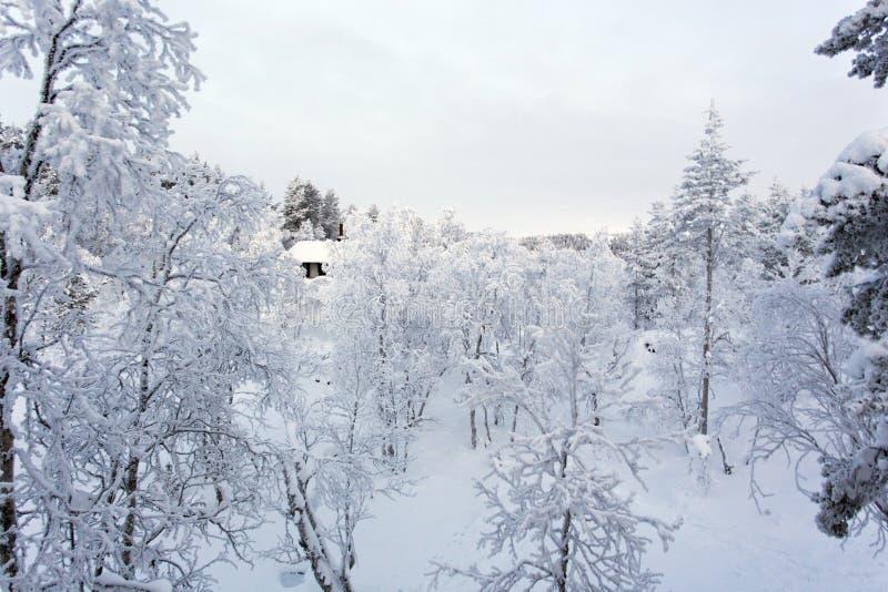 Frozen landscape during polar night. In Saariselka, Finland royalty free stock photos