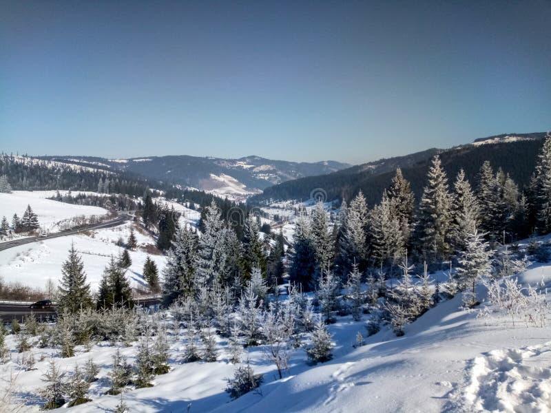 Frozen landscape, Vatra Dornei.  stock photography