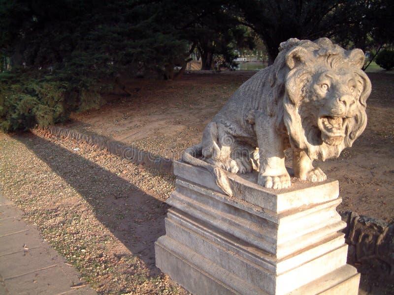 Frozen lion