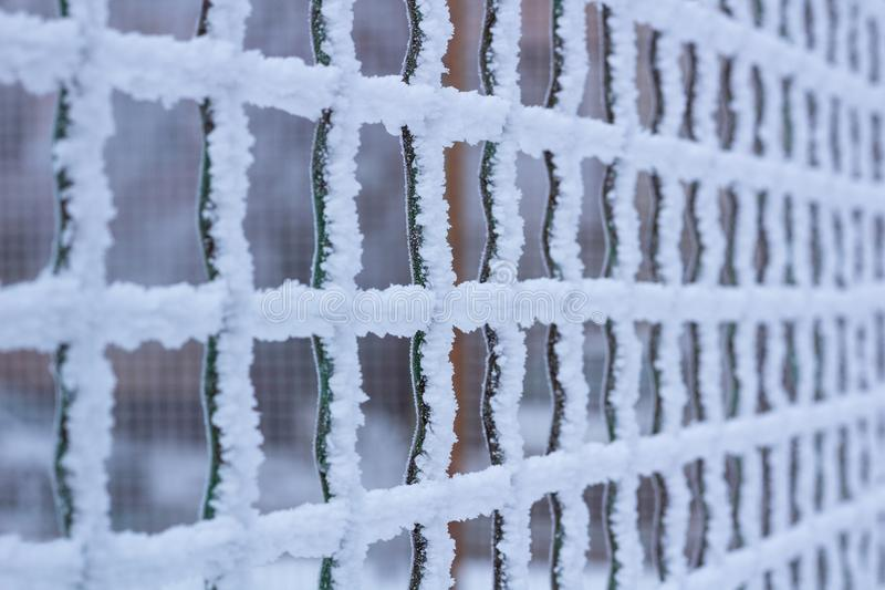 Frozen metal iron net grid covered with frost in winter royalty free stock photos
