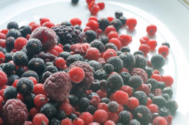 Frozen mixed fruits. Closeup to frozen mixed fruits stock photo