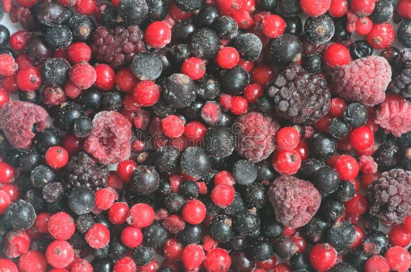 Frozen mixed fruits. Closeup to frozen mixed fruits stock images