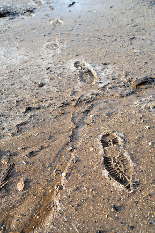 Download Frozen Mud And Boot Prints stock photo. Image of feet - 7025914