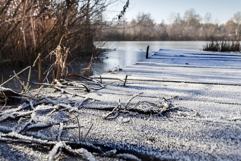 Download Frozen pier stock photo. Image of shape, flora, foreground - 38211172