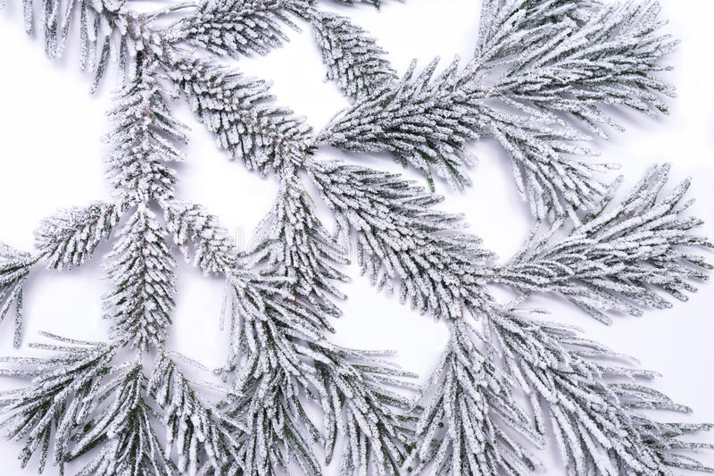 Download Frozen pine branch stock image. Image of cozy, fire, white - 36605661