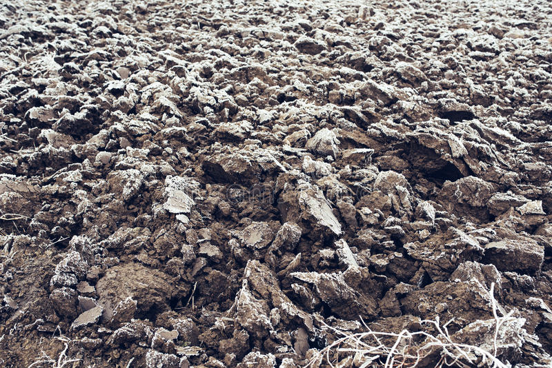 Frozen plowed agricultural field covered with frost. In early winter morning royalty free stock images