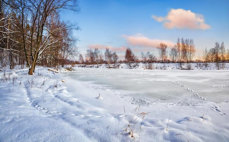 A frozen pond in a park with snow-covered trees stock photo