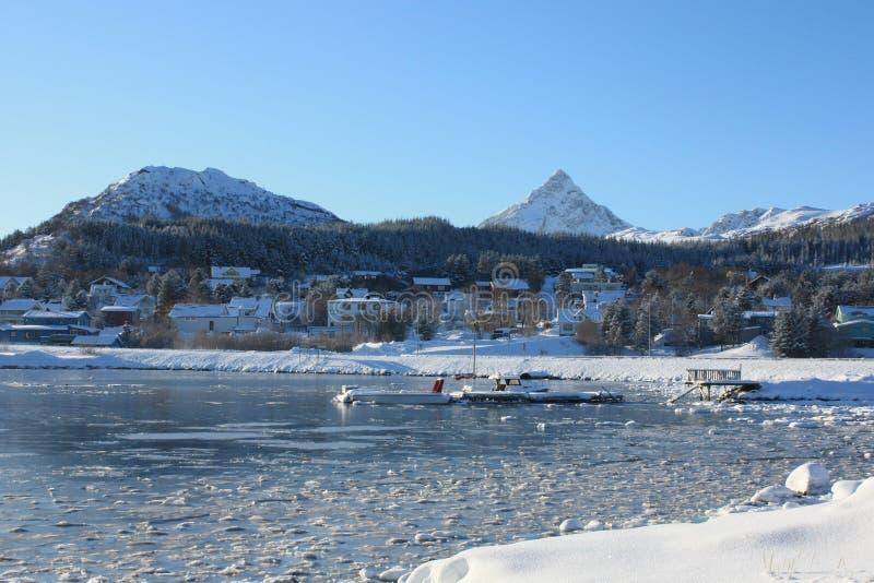 Frozen port. The frozen harbour of Gravdal in Lofoten islands royalty free stock photo