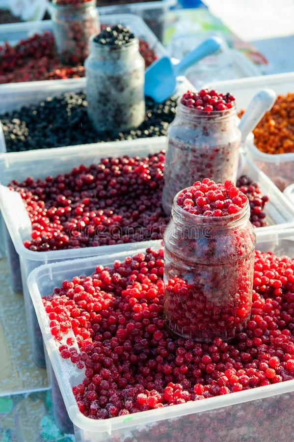 Frozen red berry fruits stock images