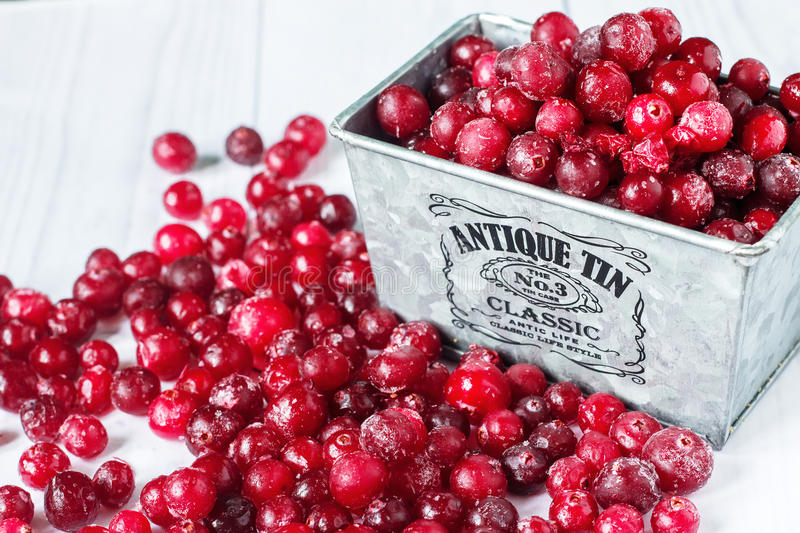 Frozen red cranberry royalty free stock images