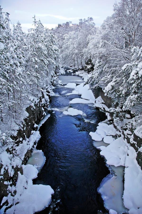 Free Frozen River Royalty Free Stock Photo - 12534435