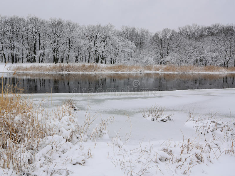 Frozen river. Beautiful winters morning landscape with the river royalty free stock photos