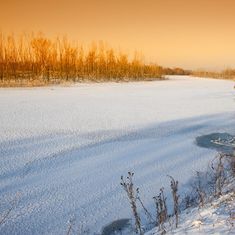 Frozen river covered with snow and trees. On the shore a landscape in the countryside royalty free stock photo