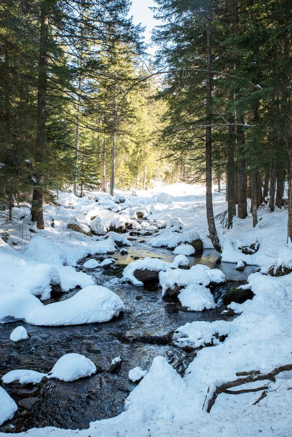 Frozen river in mercantour national park in French alps stock image