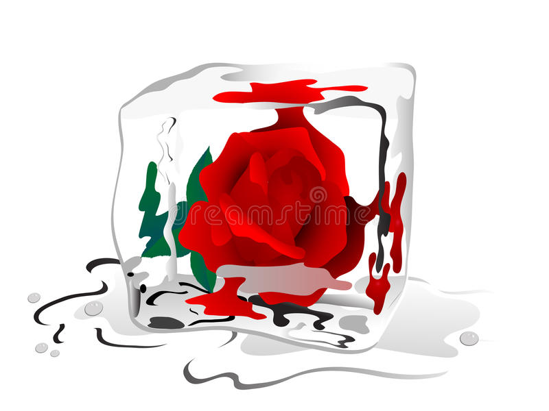Frozen Rose Bloom Royalty Free Stock Photo