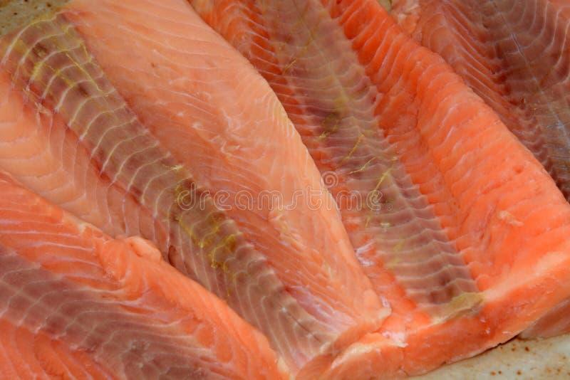 Frozen salmon fillets stock photo