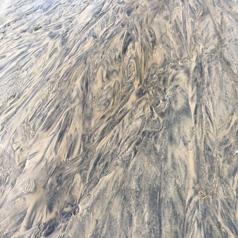 Frozen Sand royalty free stock photo