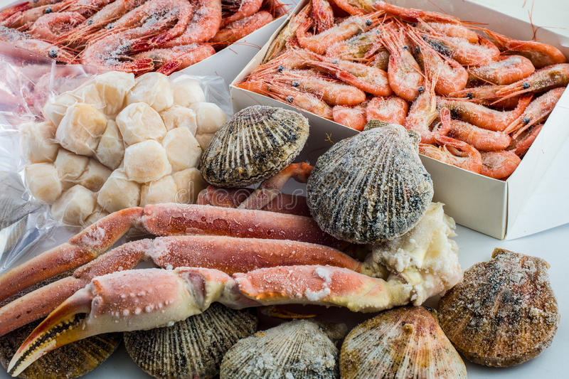 Frozen shells of the scallop, shrimps and crabs royalty free stock photos