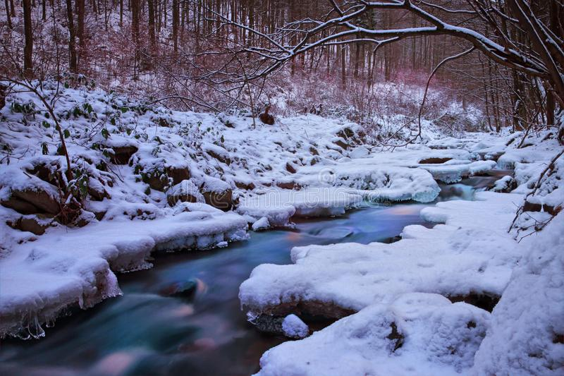 Frozen Small Stream royalty free stock photo