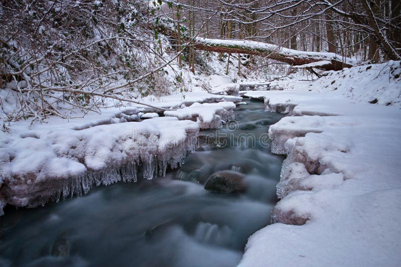 Frozen Small Stream royalty free stock photography