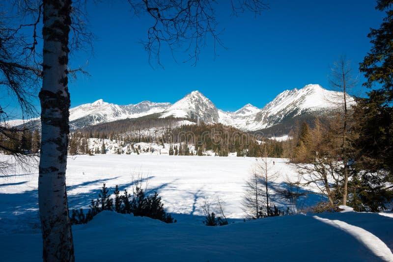Frozen Strbske Pleso in High Tatras, Slovakia stock photos