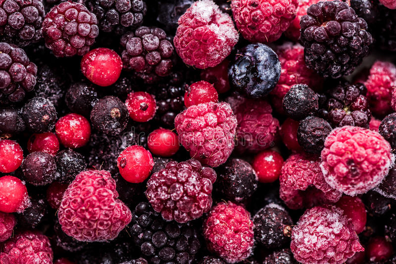 Frozen summer forest wild berries fruits, full frame background royalty free stock photos