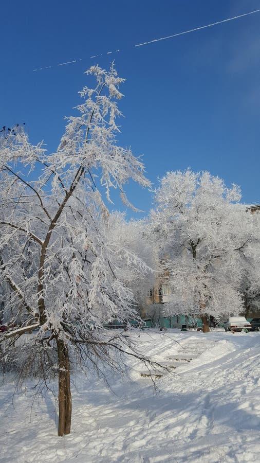Frozen tale stock image