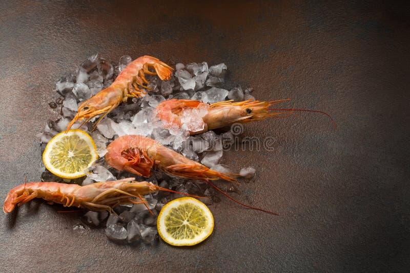 Frozen tiger shrimp on ice on a dark stone table stock photos