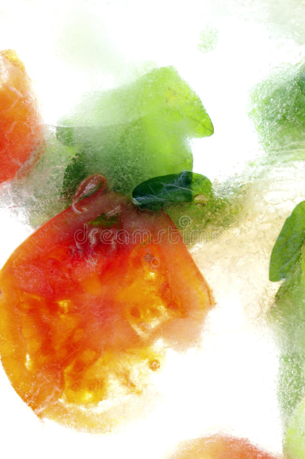 Frozen Tomato royalty free stock photo
