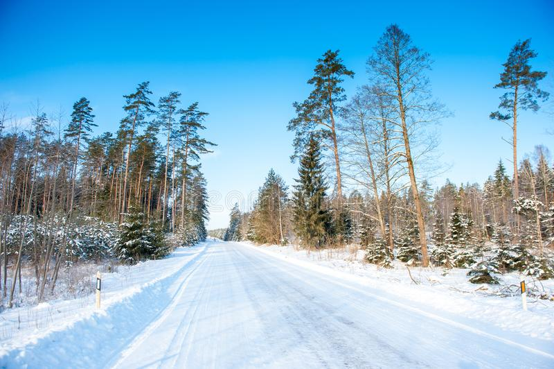 Frozen trees and snowy land road at winter stock photos