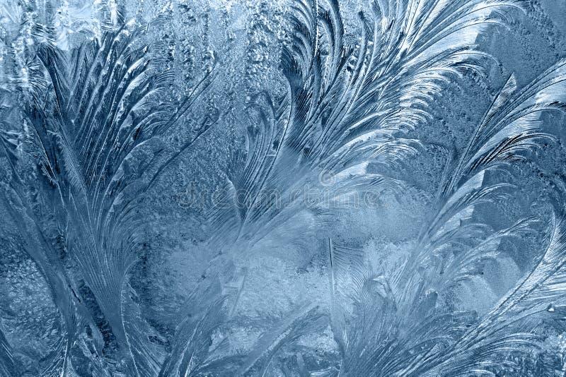 Frozen window-glass royalty free stock image