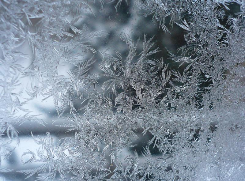 Frozen Window of a Winter Morning royalty free stock image