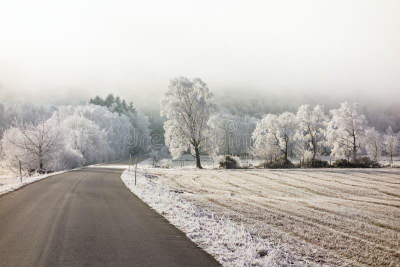 Frozen winter landscape royalty free stock image