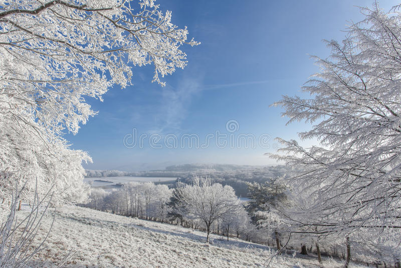 Download Frozen  Withe Snow Winter Magic Landscape Nature Stock Photo - Image: 83706905