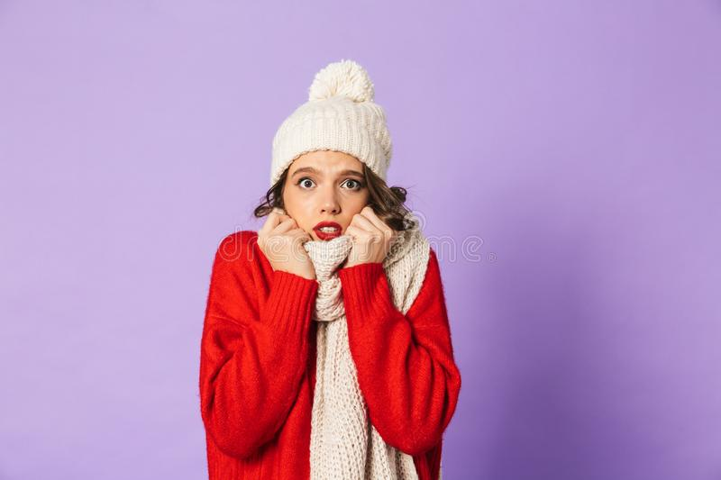 Frozen woman wearing winter hat and scarf isolated over purple background. Portrait of a young frozen woman wearing winter hat and scarf isolated over purple royalty free stock image