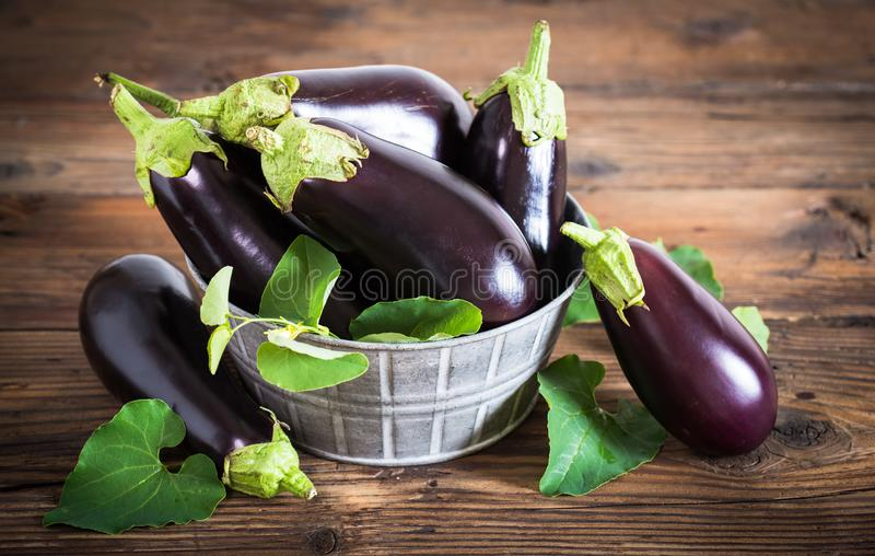 Frsh organic eggplant. In the bowl close up royalty free stock photos