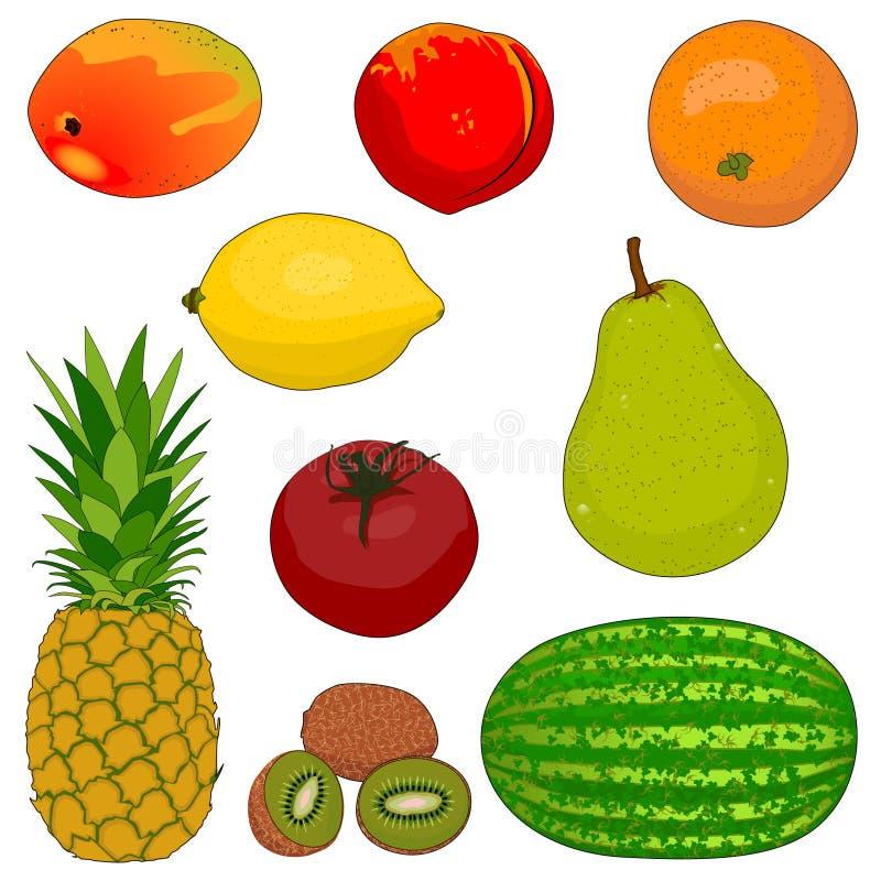 Frucht-Ansammlung 1 stockbild