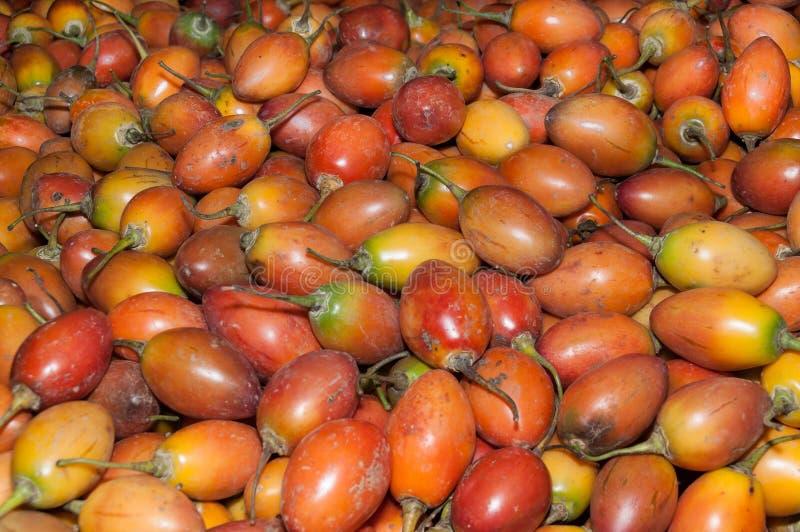 Frucht, Baumtomate im Supermarkt - Nachtschatten betaceum stockbild